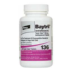 Baytril Antibacterial Taste Tabs for Dogs and Cats Bayer